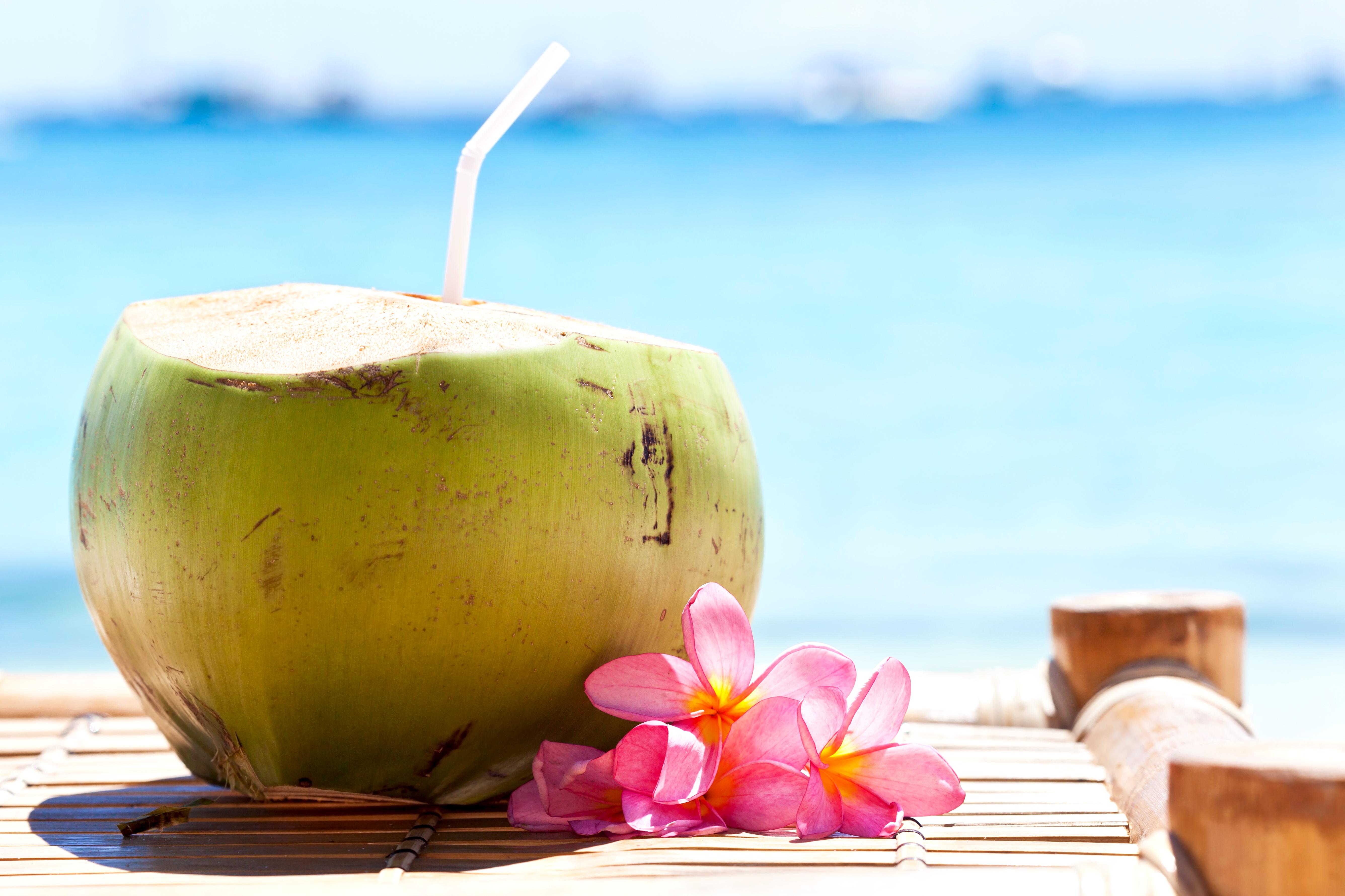 Boracay Coconut