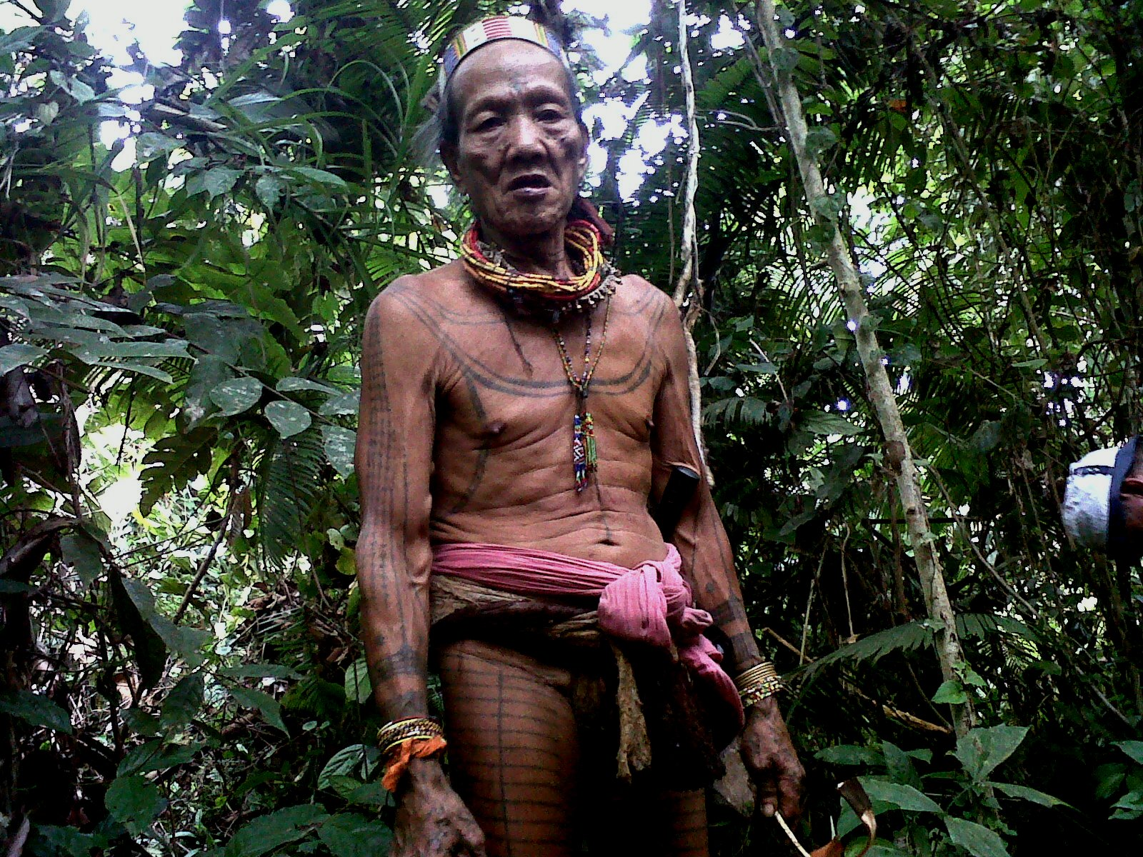 Mentawai Tribe  The Chief