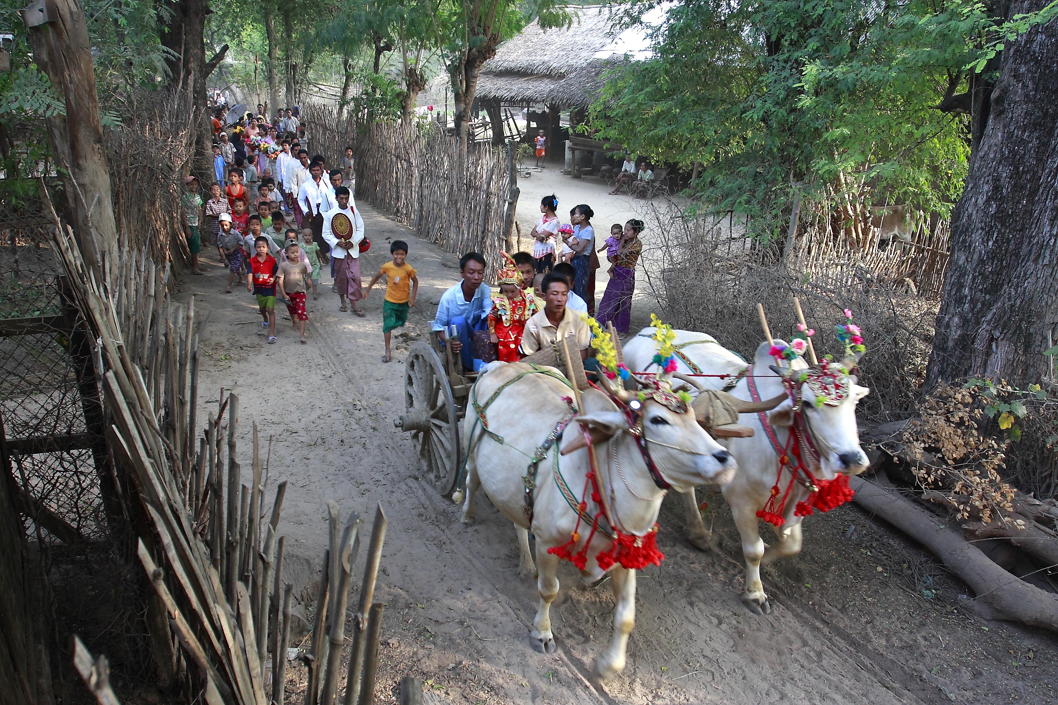 Novicing procession