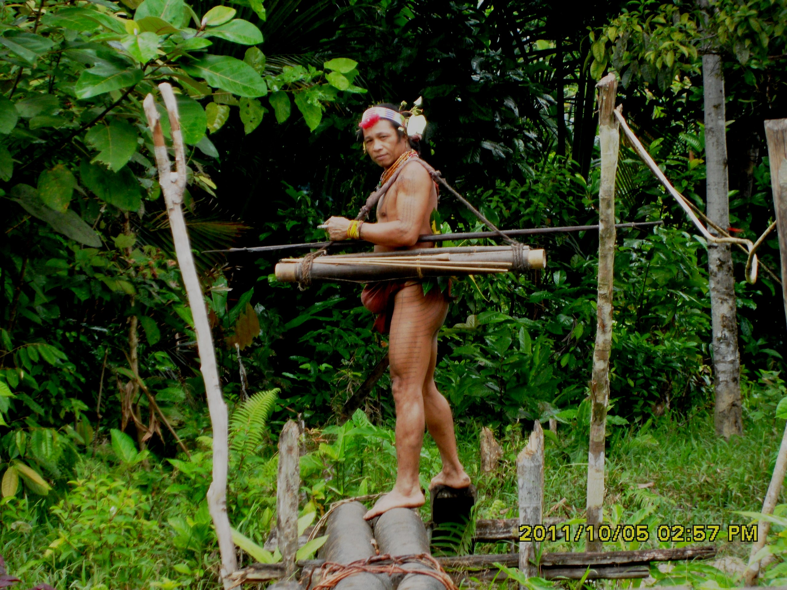 Mentawai Tribe - The Warrior 3