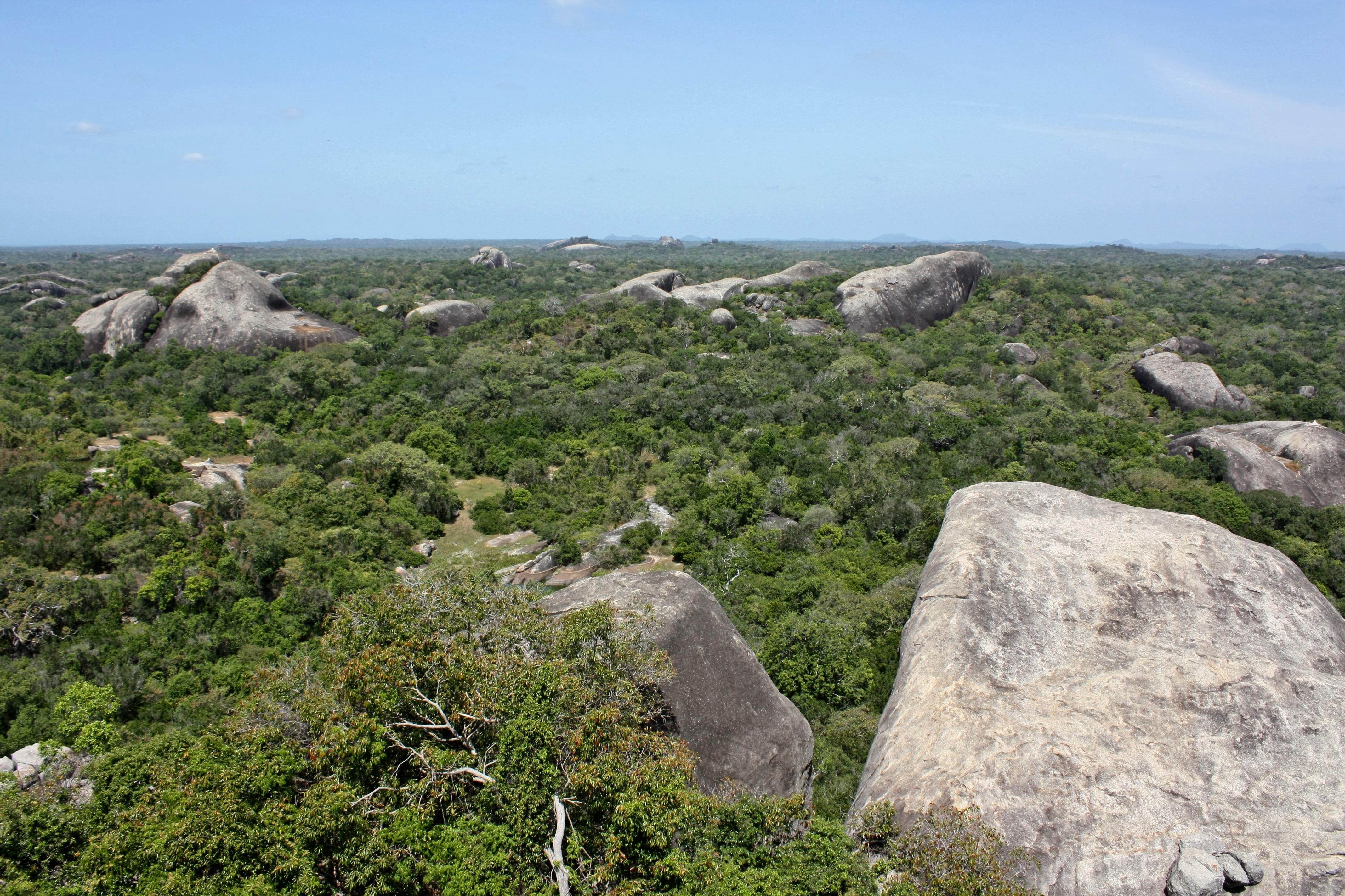 Kumana_National_Park_(Kudumbigala_Sanctuary)