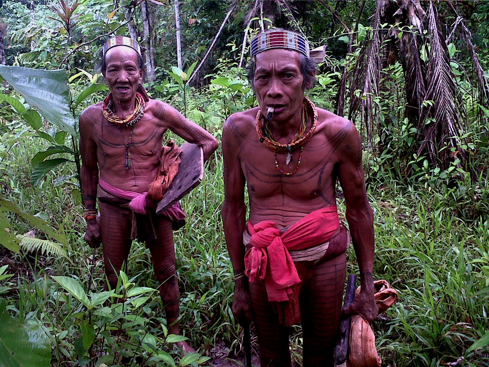 Mentawai Tribe  Going To The Jungle