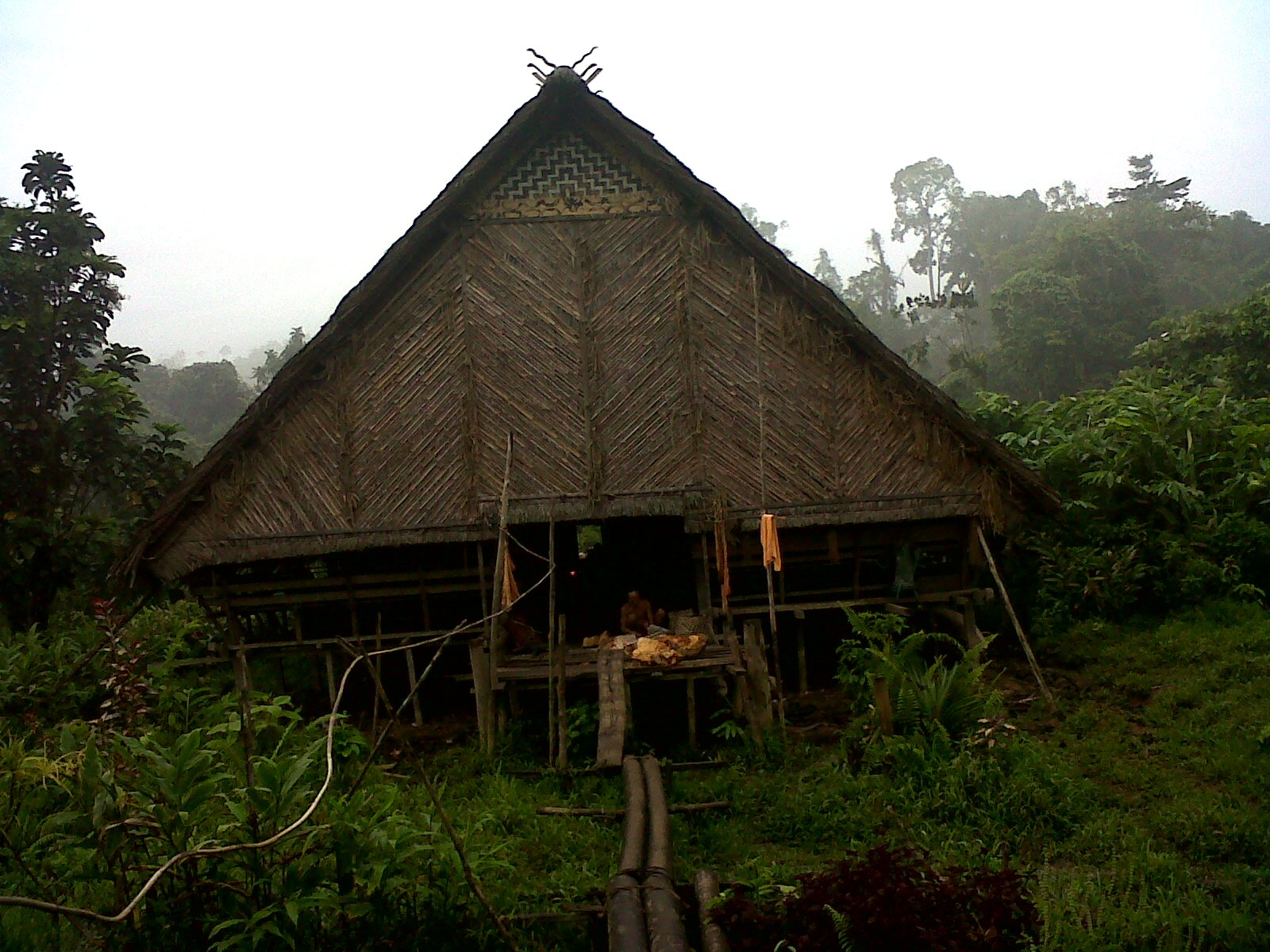 Uma Traditional Mentawai House