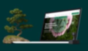 Copiral   macbook view