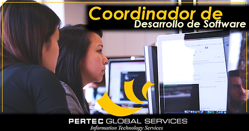 Coordinador de desarrollo de software.pn