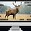 Thumbnail: ATN X-SIGHT II HD 3-14x