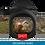 Thumbnail: ATN X-SIGHT II 4K PRO 5-20X
