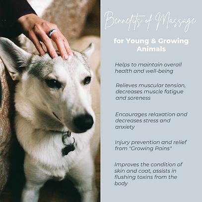 Benefits of massage2.png
