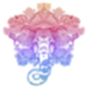 AdobeStock_202949308-2 (1).png