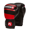Aspire Agari 16 oz Boxing Glove