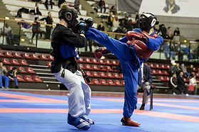 Viêt Vo Dao Evry, viet vo dao evry courcouronnes, cours d'arts martiaux evry 91