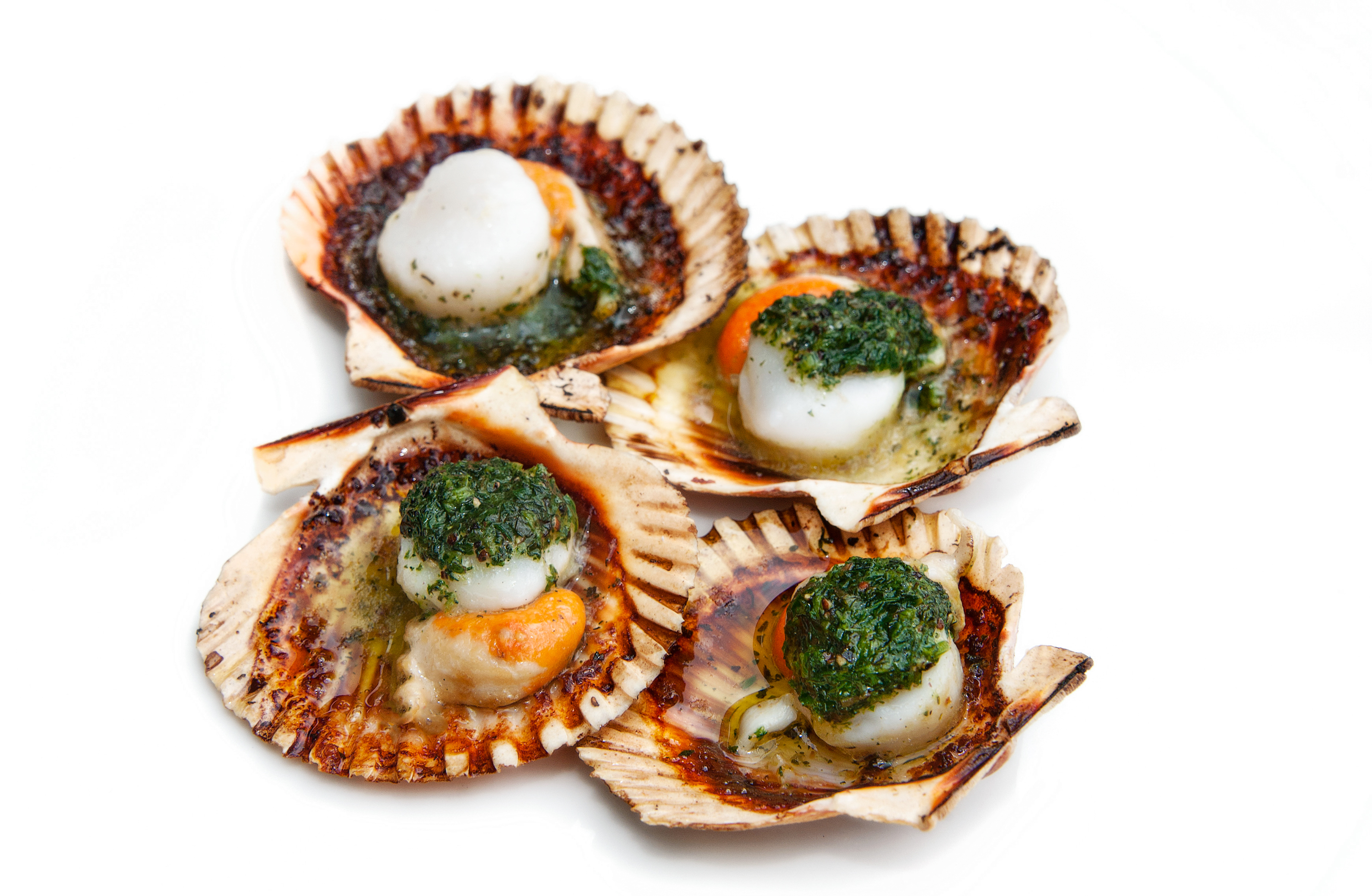 Scallops - food photographer Dorset