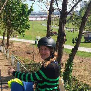 Gemeenteraad : interpellatie over bomenplan /plan arbre @1030