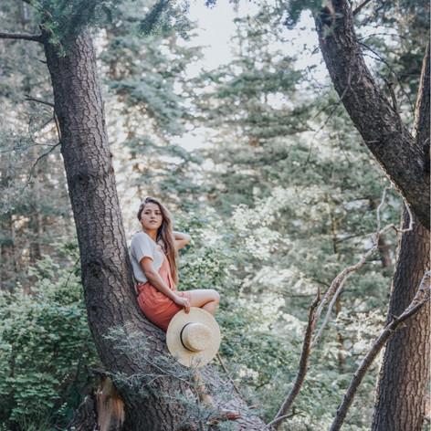 Big Cottonwood