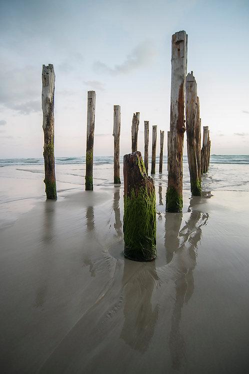 St Clairs Beach, Dunedin NZ