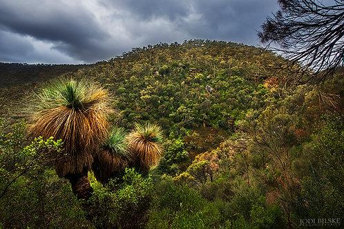 Morialta Conservation Park, Adelaide ~ SA017