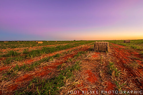 CANVAS PRINT - Fields Forever - 450x300mm