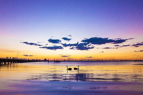St Kilda Beach, Melbourne Victoria ~ MN007