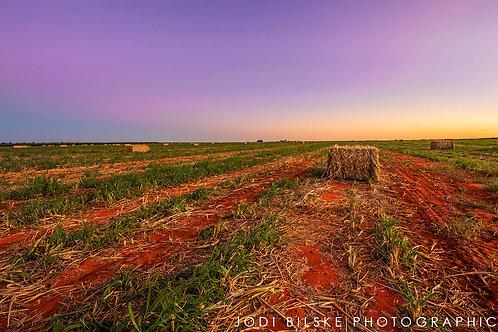 Farming Land, Katherine NT ~ KR033