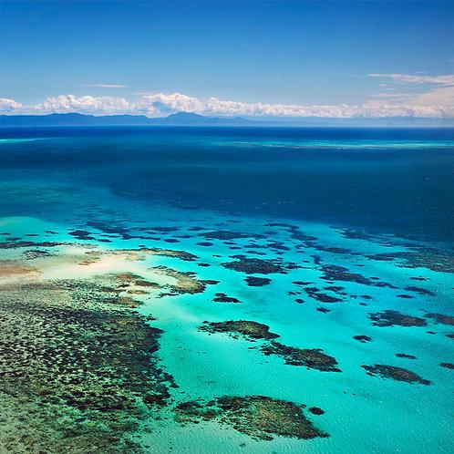 The Reef, Cairns, Queensland