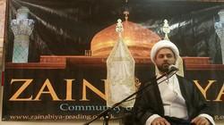 Shaykh Muhammed Ali Ismail