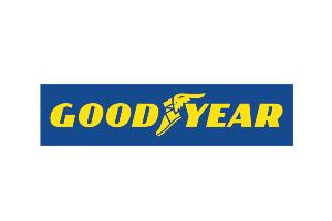 Programa de Estágio Goodyear 2021