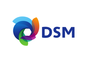 Programa de Trainee DSM 2021
