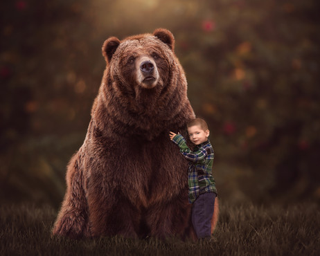 Momo bear 2 8x10.jpg
