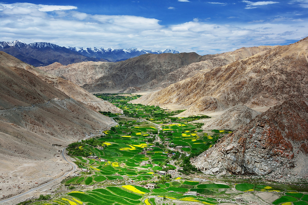 Lush valley in Tibet