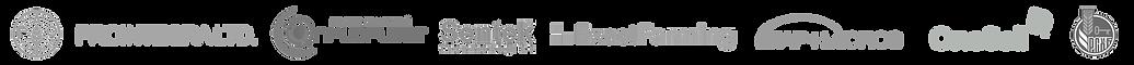 лого партнеров.png