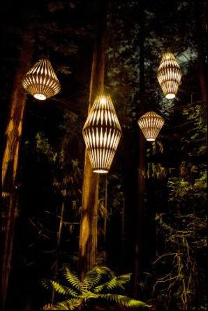 leading lights .jpeg