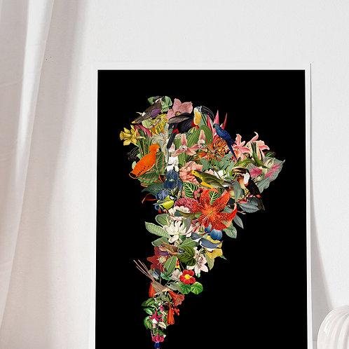 Mapa Flor de Sudamérica Negro - Lámina