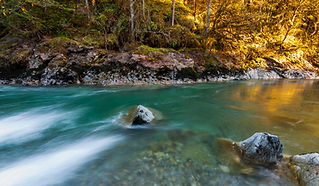 The North Fork Nooksack River flows glacial blue for much of the year.  Photo: Daniel Nylen
