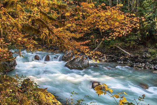 The North Fork in the fall.  Photo: Brett Baunton