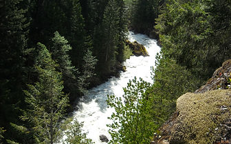 Canyon Creek in the North Fork watershed.
