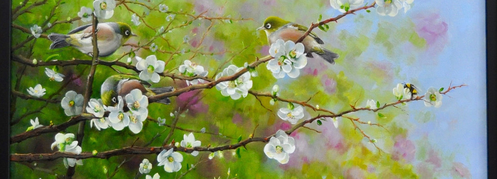 Waxeyes in the Japonica