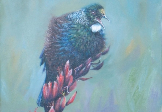 Tommy Tui