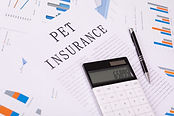 Pet Insurance: Yes or No?