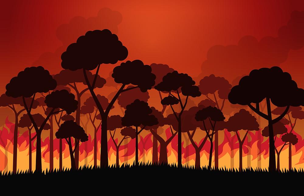 Illustration of burning forest