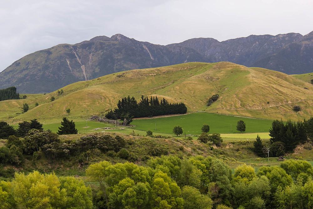Aldri langt mellom fjell og frodighet på Nes Zealand.