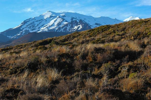 Mektig vakkert! Tongariro National Park.