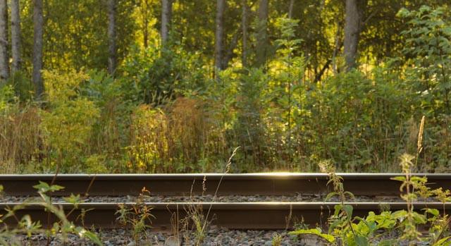 Ta tilbake reisegleden - ta toget!