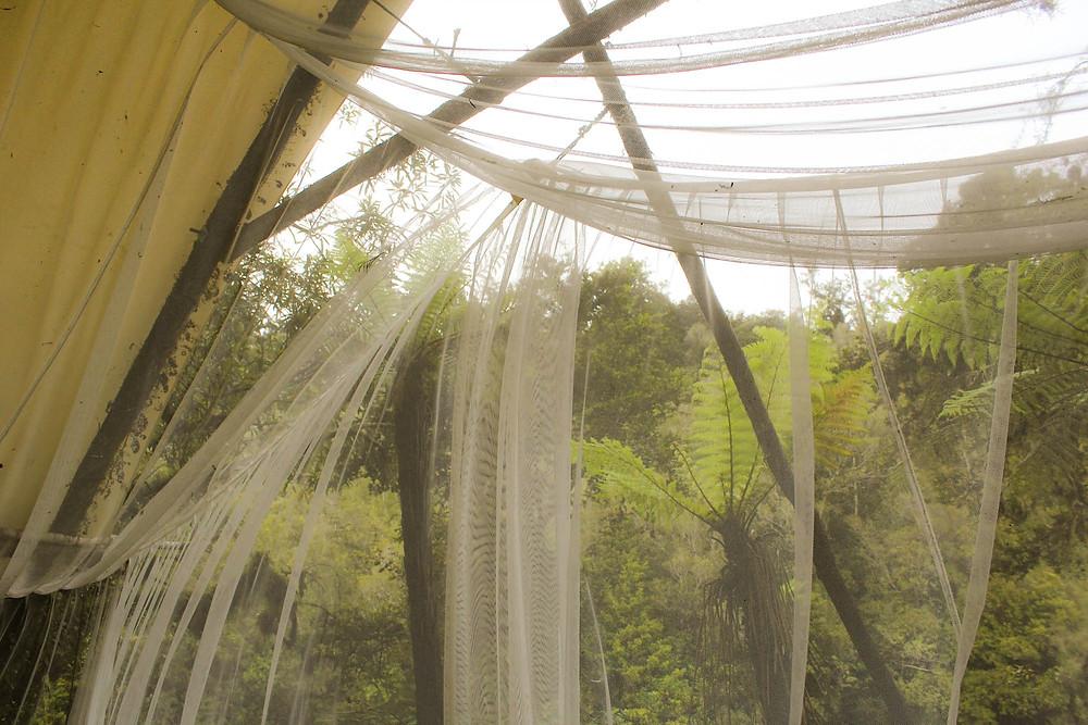 Utsikt fra et velutstyrt telt i Hokitika.