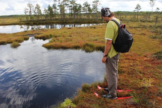Landskapet endrer seg - små sjøer kommer og forsvinner igjen her i Sooma nasjonalpark.