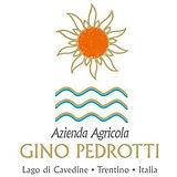 Pedrotti_logo.jpg