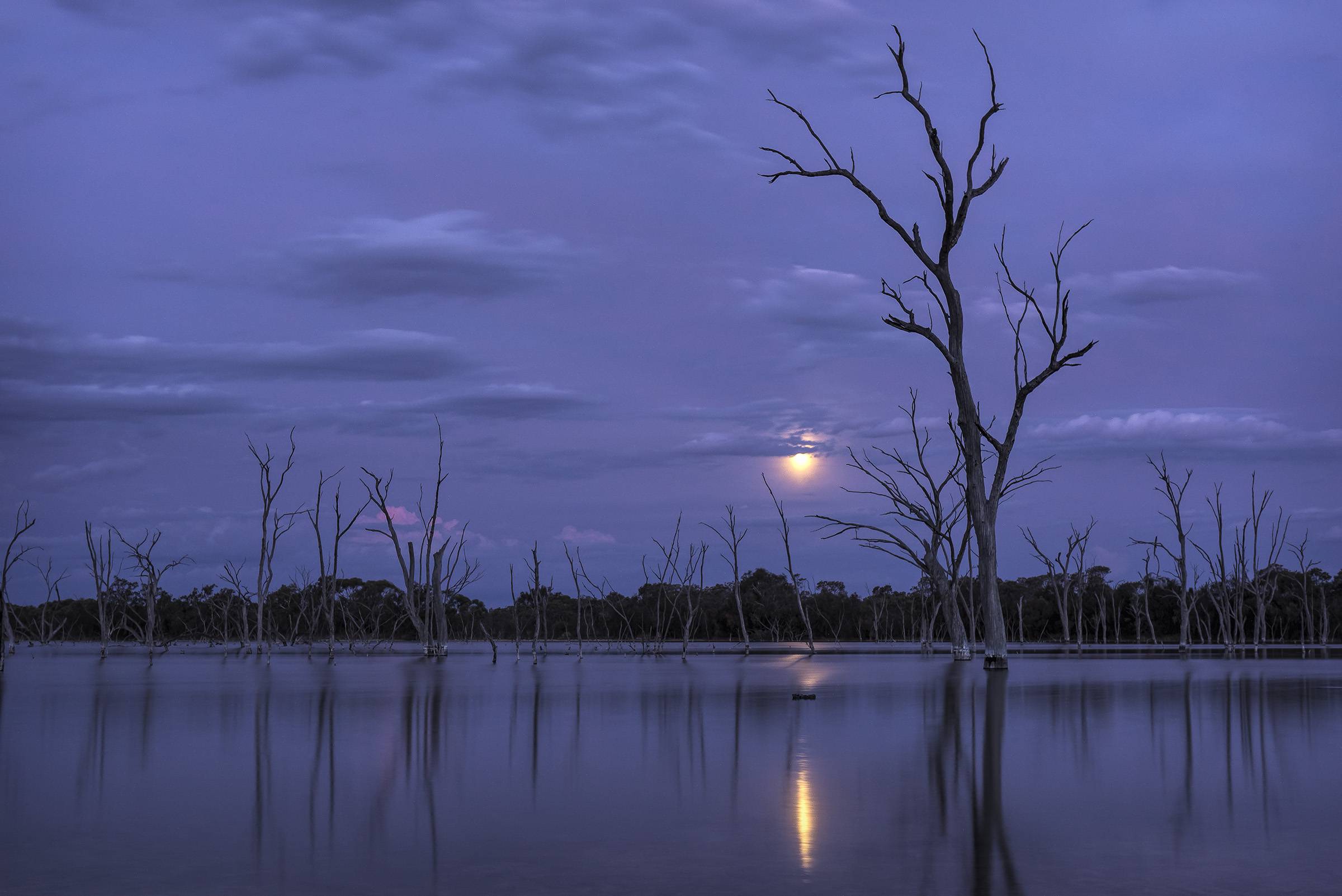 Boshack Lake in Moonlight