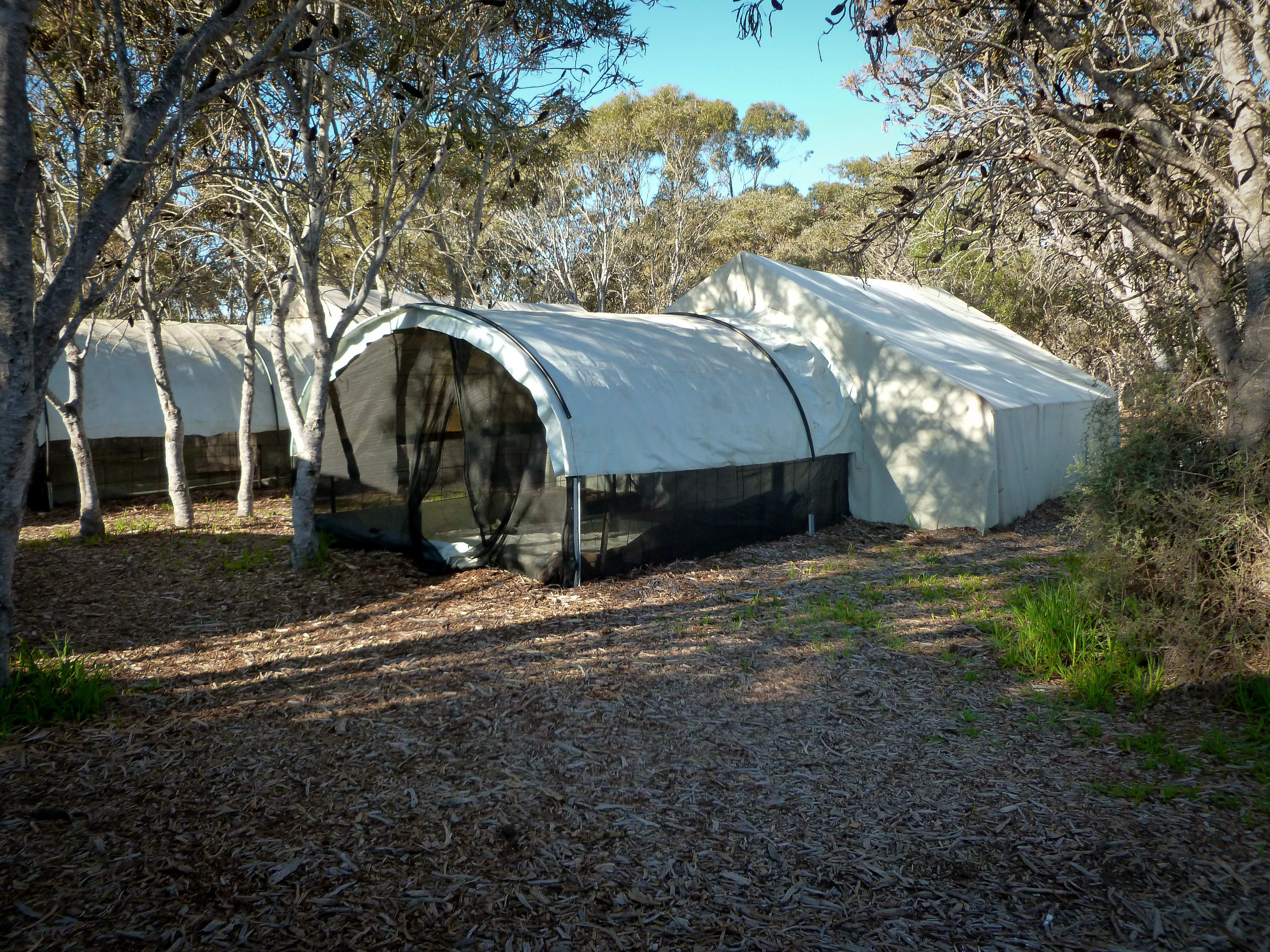 Glamping at Day Tour Perth Farms