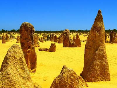Perth Attractions - Pinnacles Tour