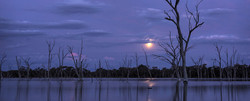 Moonlight Scene During Farmstay