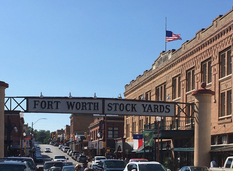 A Good Day at the Fort Worth Stock Yards: History, Texas Lore, and Livestock Lessons